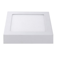 LED Ceiling light Square 12 Watt 3000K 750lm - Surface mounted ceiling lamp