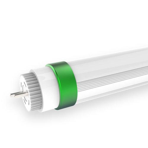 LED T8 TL Buizen