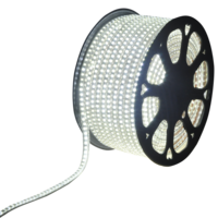 LED Light hose 50 meters 6500K daylight white 60 LEDs per meter IP65 incl. power cable Plug & Play