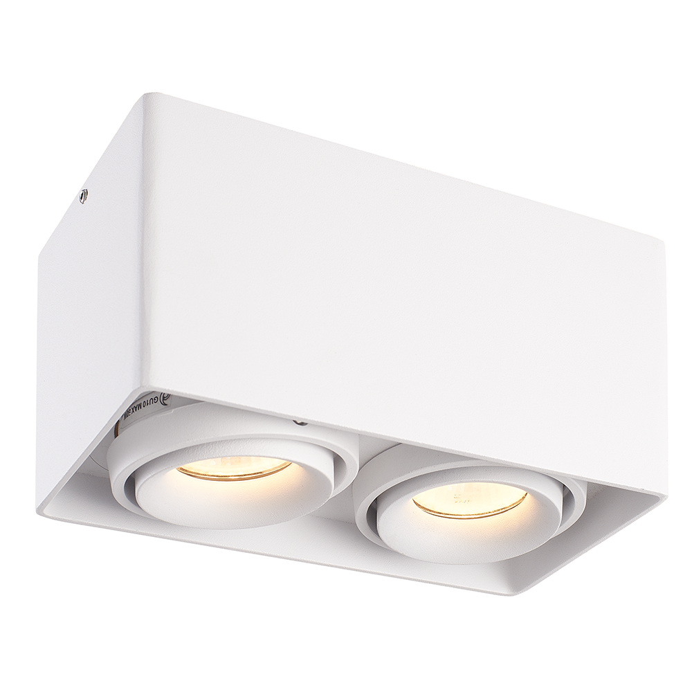 Dimbare LED opbouw plafondspot Esto Wit 2 lichts IP20 kantelbaar excl. lichtbron
