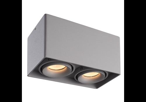HOFTRONIC™ Dimbare LED opbouw plafondspot Esto Grijs 2 lichts IP20 kantelbaar excl. lichtbron