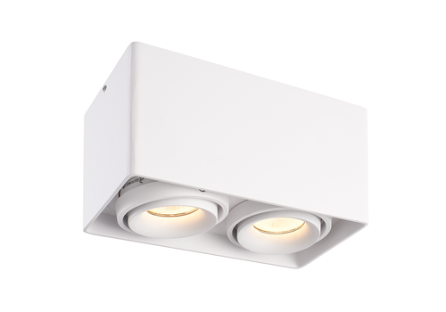 HOFTRONIC™ Dimbare LED opbouw plafondspot Esto Wit 2 lichts kantelbaar incl. 2x GU10 spot 5W 2700K