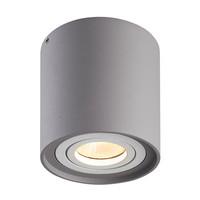 Dimbare LED opbouw plafondspot Ray Grijs met witte afdekring IP20 kantelbaar excl. lichtbron