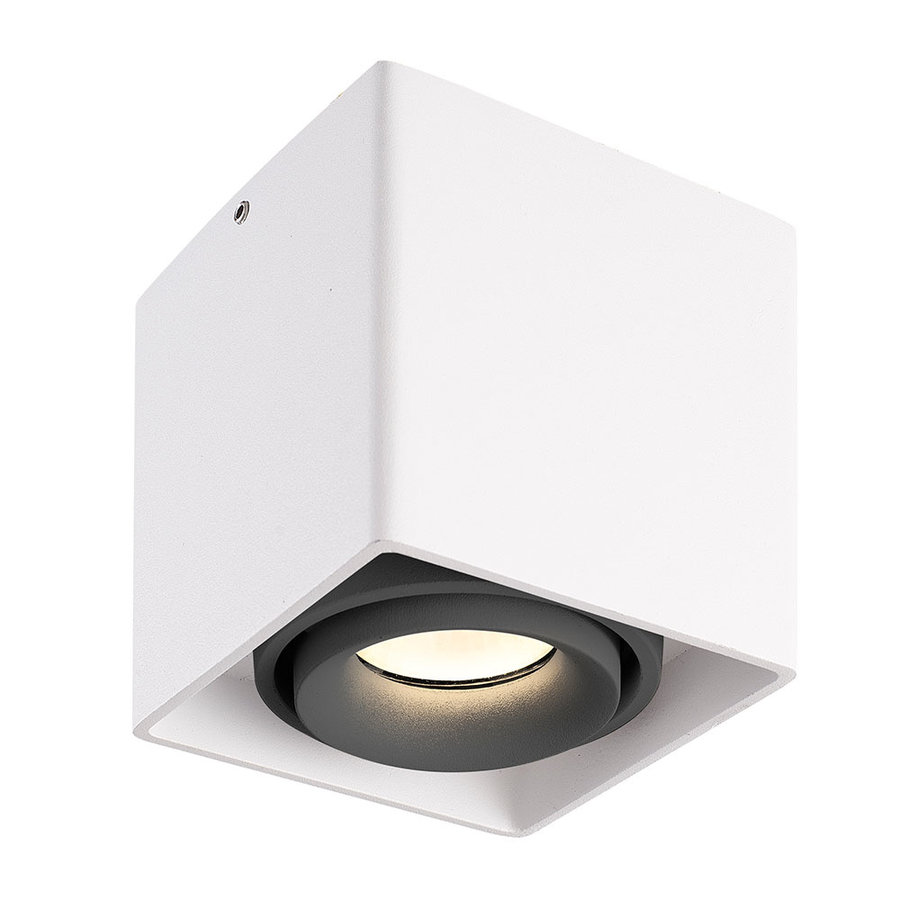 Dimbare LED opbouw plafondspot Esto Wit/Grijs kantelbaar 5W 2700K