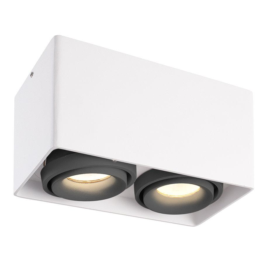 Dimbare LED opbouw plafondspot Esto Wit/Grijs 2 lichts kantelbaar 5W 2700K