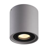 Dimbare LED opbouw plafondspot Ray Grijs met zwarte afdekring IP20 kantelbaar excl. lichtbron