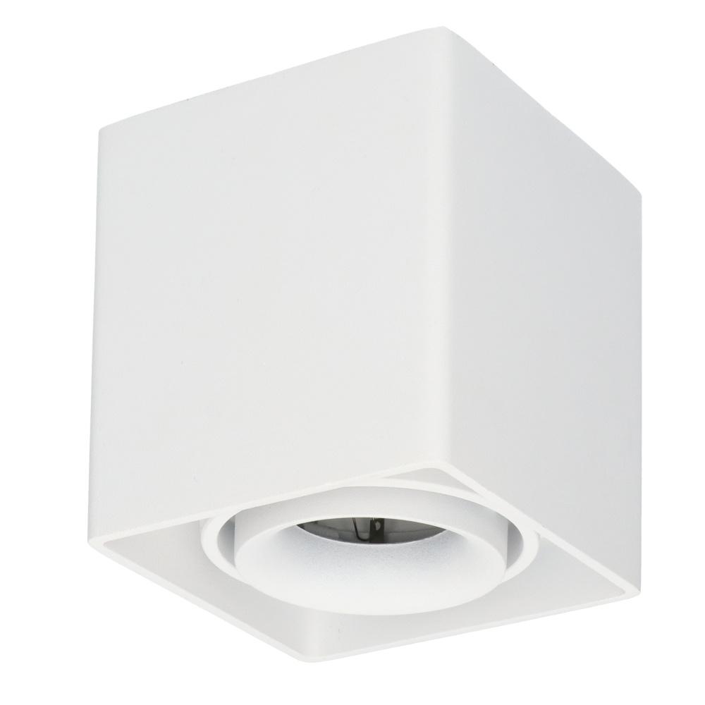 Dimbare LED opbouw plafondspot Esto GU10 Wit IP20 kantelbaar excl. lichtbron