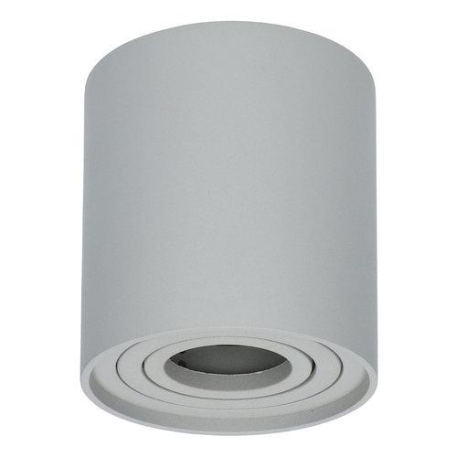 HOFTRONIC™ Dimbare LED Opbouwspot plafond Ray Grijs IP20 kantelbaar excl. lichtbron