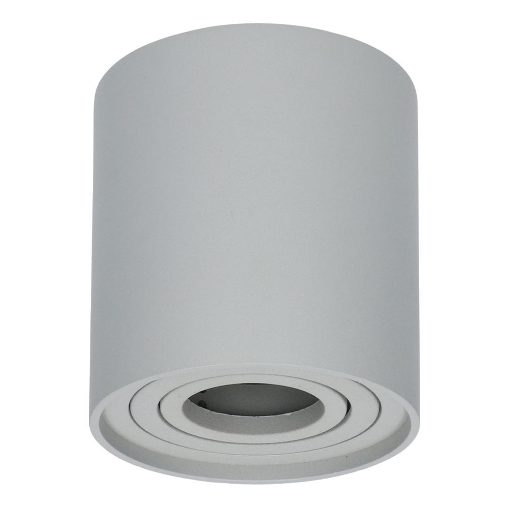 Dimbare LED Opbouwspot plafond Ray Grijs IP20 kantelbaar excl. lichtbron