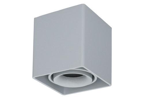HOFTRONIC™ Dimbare LED opbouw plafondspot Esto GU10 Grijs IP20 kantelbaar excl. lichtbron