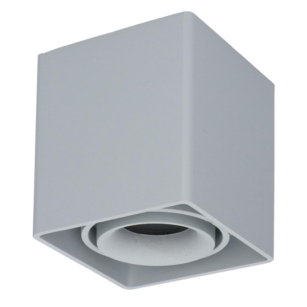 Dimbare LED opbouw plafondspot Esto GU10 Grijs IP20 kantelbaar excl. lichtbron