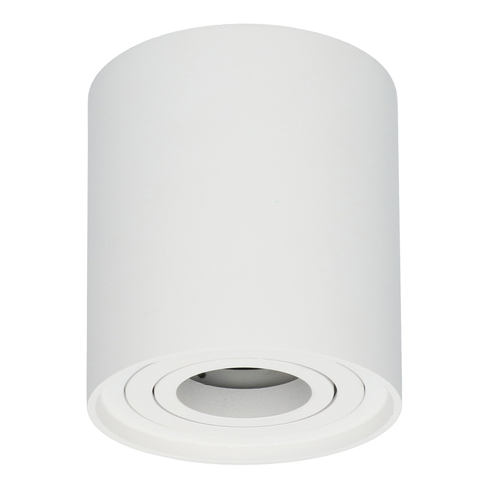 Dimbare LED Opbouwspot plafond Ray Wit IP20 kantelbaar excl. lichtbron