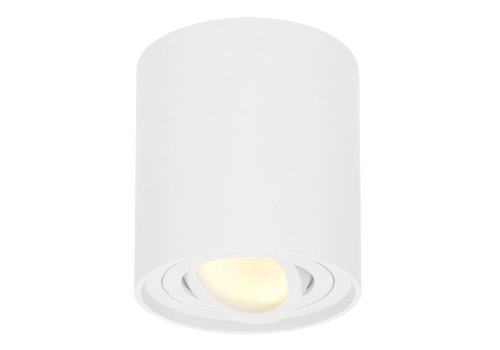 HOFTRONIC™ Dimmable LED surface mounted ceiling spotlight Ray 2700K incl. GU10 White IP20 tiltable