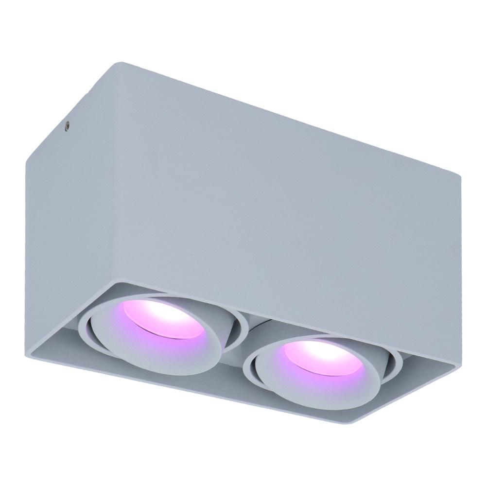 Smart WiFi LED opbouw plafondspot Esto 2 lichts Grijs incl. 2x 5,5W GU10 RGBWW spot IP20 kantelbaar