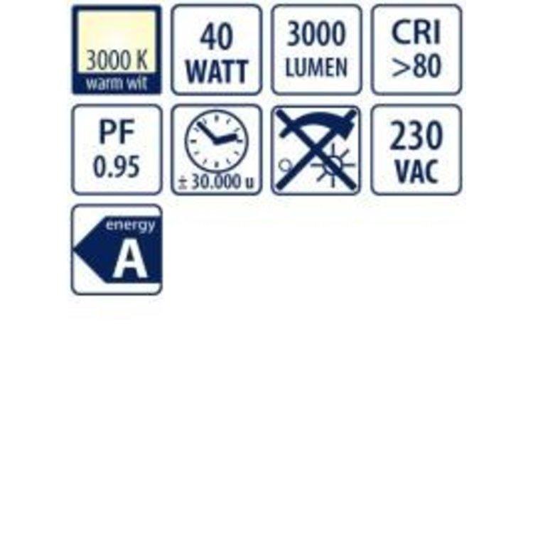 Lucente ILP595K4