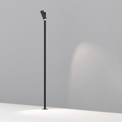 Dexter Vector Pole
