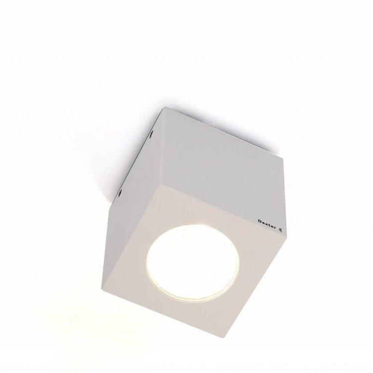 Dexter Cube ceiling