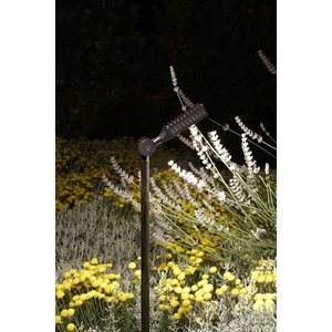 Royal Botania Spiky Ground