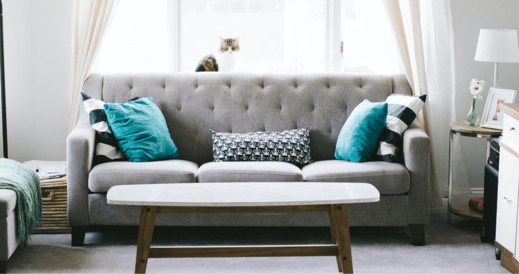 Couch reinigen? - Beste Tipps & Empfehlung