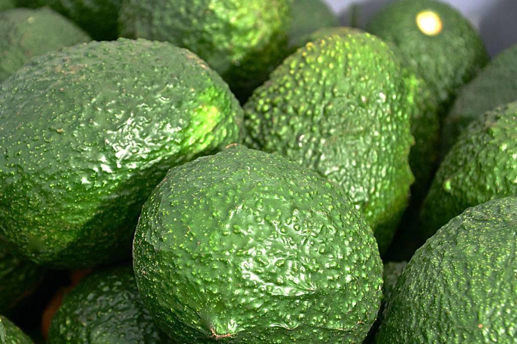 Onze top 2 heerlijke avocado producten