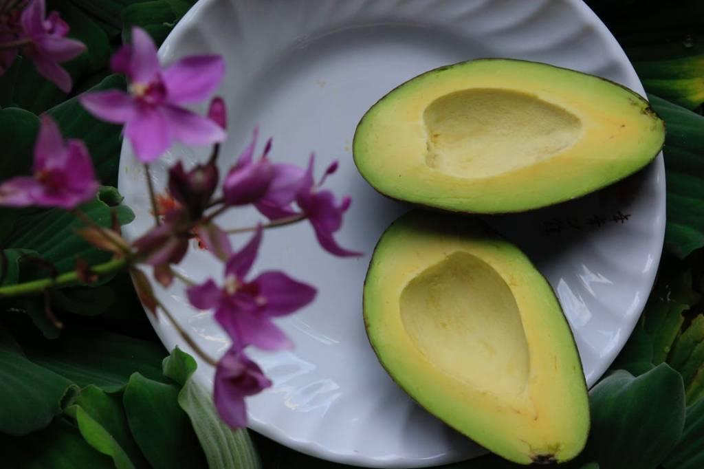 Waarom het koken met avocado olie beter is voor je gezondheid