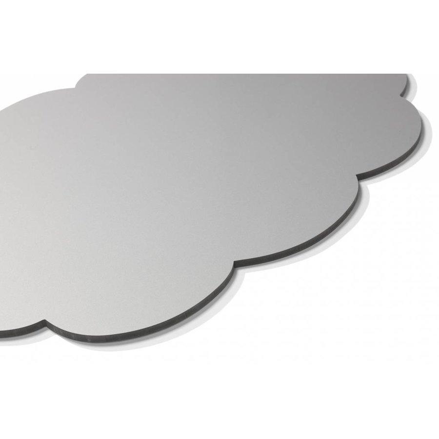 Chameleon Silverbord Denkwolk-3