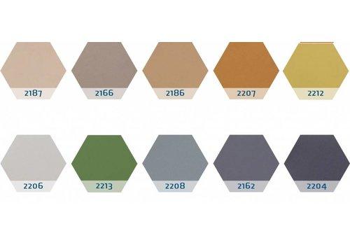 Chameleon prikbord zeshoek 10 kleuren