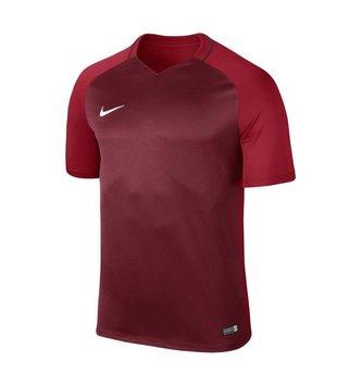 Nike Dry Team Trophy III Shirt Jersey