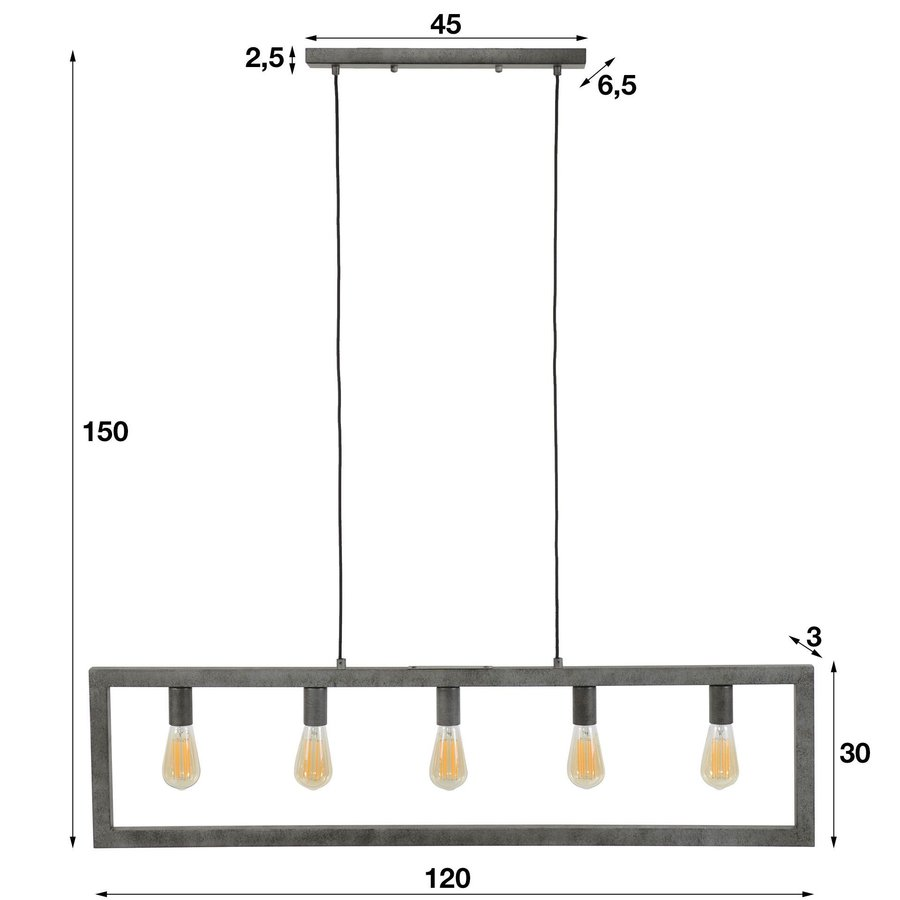 Industrial Ceiling Light Aiden 5L