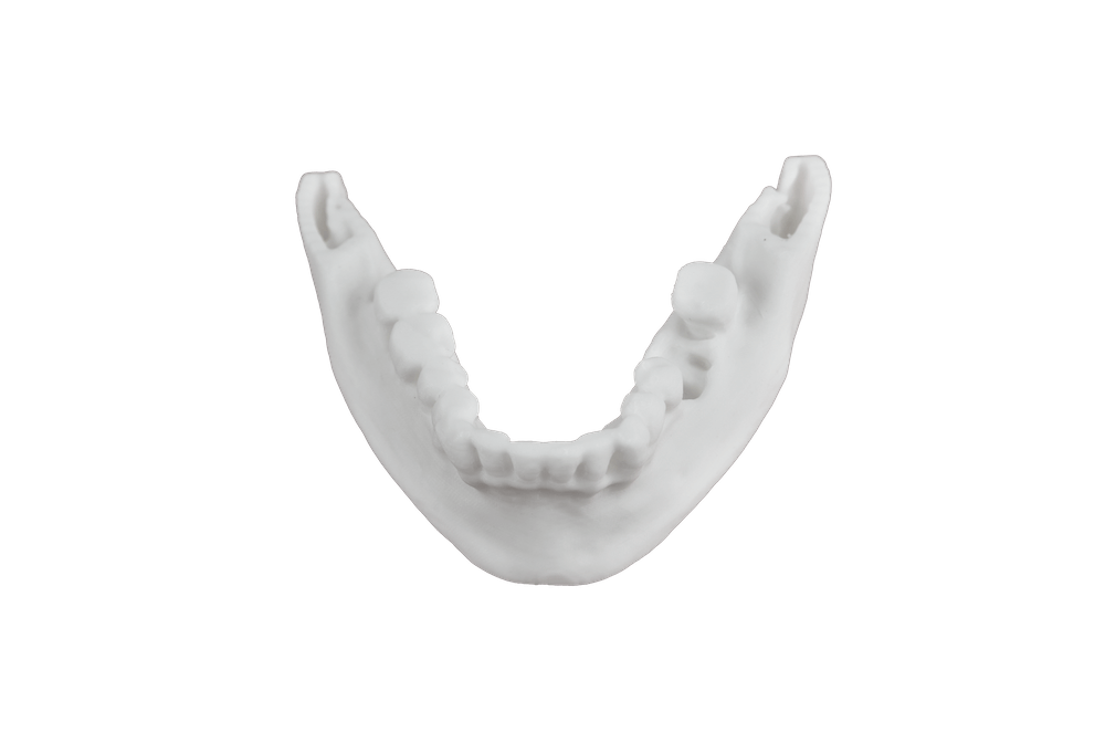 Oral 3D Printer