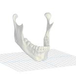 Oral3D Accesso a Dicom Converter per 1 mese