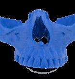 Paquete: 10 modelos impresos en 3D de su escaneo CT / CBCT con PLA