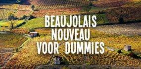 Beaujolais voor dummies