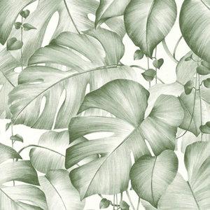 Behang Colibri 36627-2