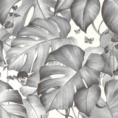 Behang Colibri 36625-2