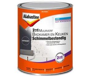 Alabastine 2 In 1 Muurverf Badkamer En Keuken Schimmelbestendig 1 Liter Antraciet Kopen Korting Tot 40 De Verfzaak