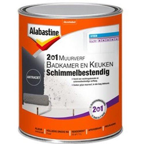 Alabastine 2-in-1 Muurverf Badkamer en Keuken Schimmelbestendig - 1 liter Antraciet