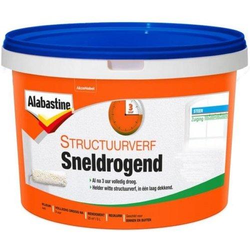 Alabastine Structuurverf Sneldrogend Extra Fijn - 5 liter