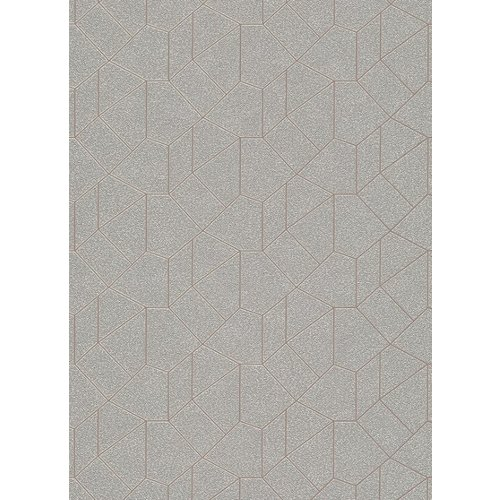 Dutch Wallcoverings Behang Carat Deluxe Dessin Zilver/Beige 10062-02