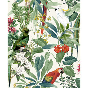 Dutch Wallcoverings Behang Escapade Tropische Vogels Groen 576204