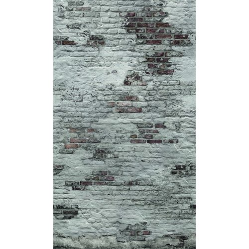 Dutch Wallcoverings Behang Exposure Mural 1,59X2,80M Ep6102