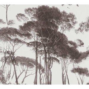 AS Creation Behang History of Art 376511