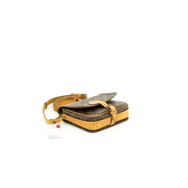 Louis Vuitton Cartouchiere Mini Monogram