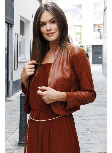 AA Zara Long Dress Camel