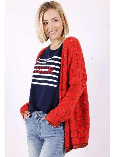 AA Sonia Top Navy/Red Print