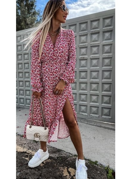 TS Eleisa Dress Red/Pink Print