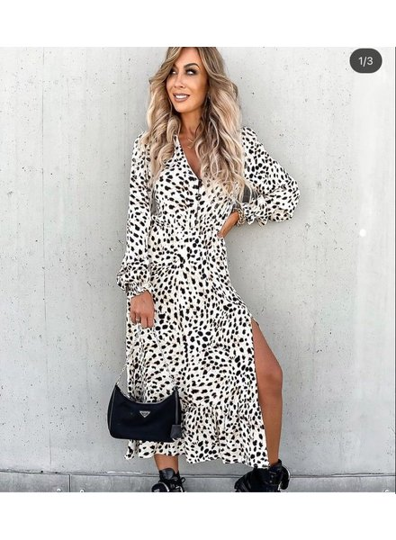TS Eleisa Leopard Dress