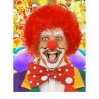Kleurige clownspuiken