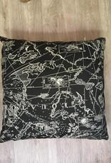 "Gotcha Covered Sunbrella Map Pattern 14"" Pillow"