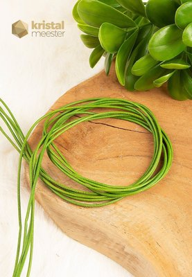 Leren veter groen - nr. 2
